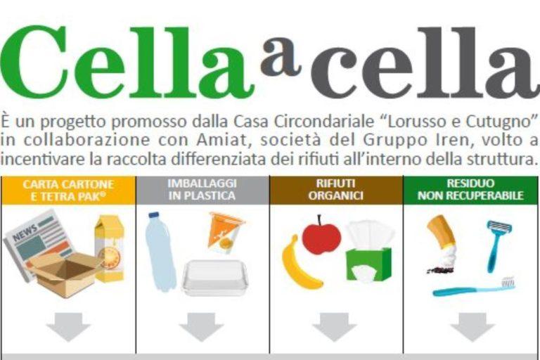 cellaacella-768x512